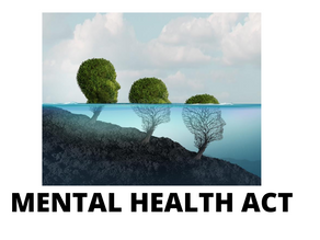 MENTAL HEALTHCARE ACT