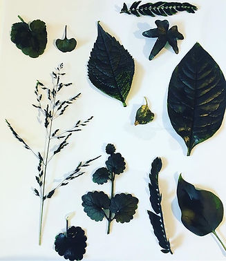 ✨Inspiration✨ Inking leaves and keeping