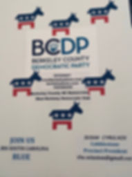 Sample Poster for BCDP Poster Party.jpg