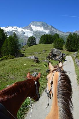 Vue sur le Mont Pourri depuis Le Monal.J