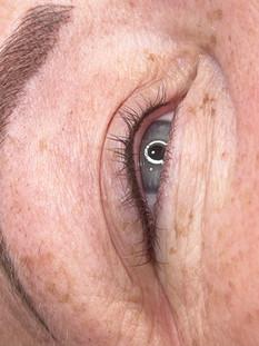 eyeliner and brow michelle berrell.jpg