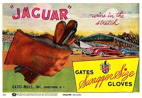 """Gates Swagger Size Gloves """"Jaguar"""""""