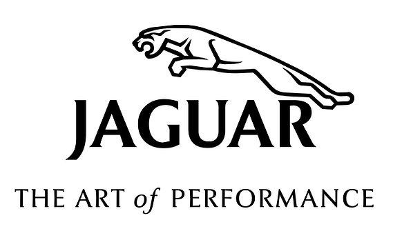 Jaguar - The Art of Performance sign