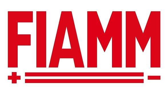 Fiamm batteries sign