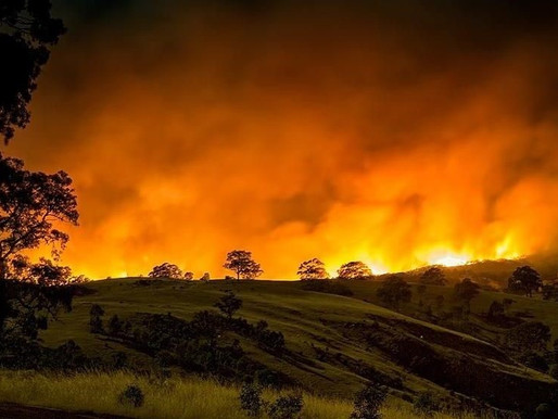 Winegrowers and Climate Calamity