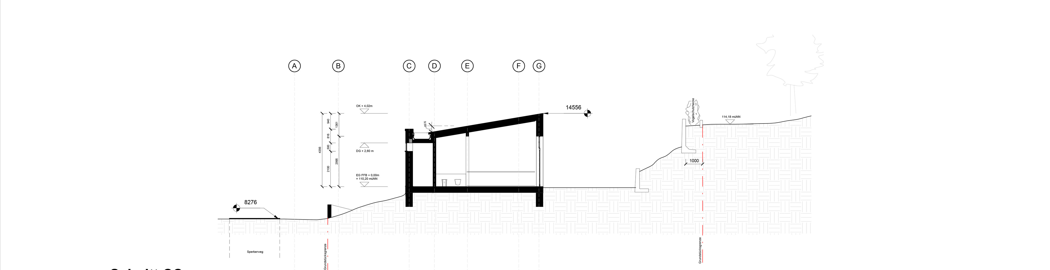 Section .jpg