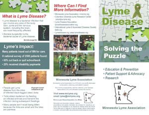 Lyme Disease Brochure outside.jpg