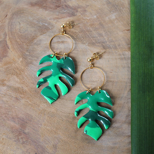 Collection summer vibes - Monstera