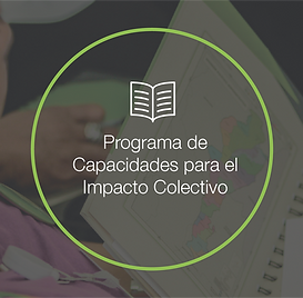 Iconos_para_página_web-Proyectos-15.pn
