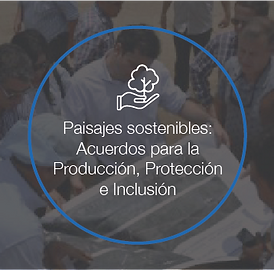 Proyecto IDH-27.png