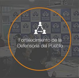 Proyecto de la defensoría png-02.png