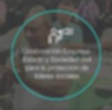 Iconos_para_página_web-Proyectos-10.pn