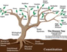 Disease-Tree.jpg