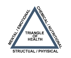 triangleofhealth1-300x244.png