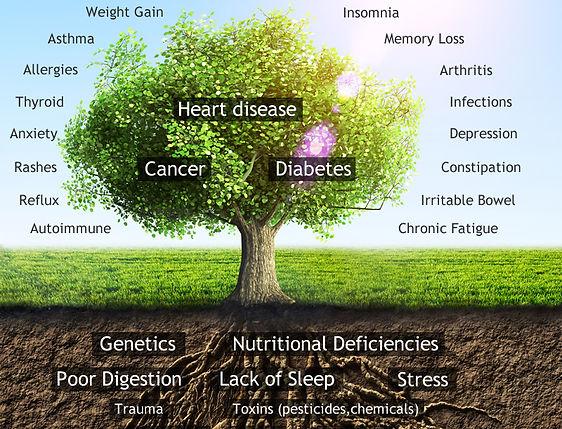 functional-HOLISTIC medicine-tree-v3.jpg