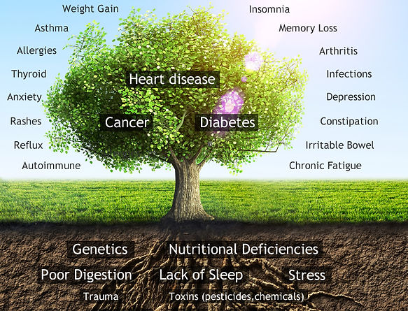functional-HOLISTIC medicine-tree-v3.jpg
