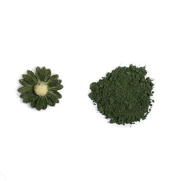 Forest Green Petal Dust