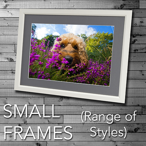 Small Frames (Various Sizes)