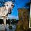 Thumbnail: Personalised Dog Bowl