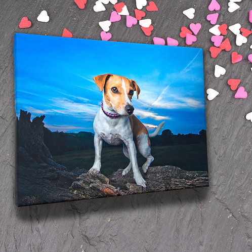 Valentine's Special - Mini Photo Session & Canvas Wrap