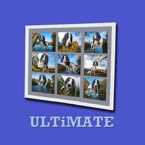 ULTiMATE Photo Experience