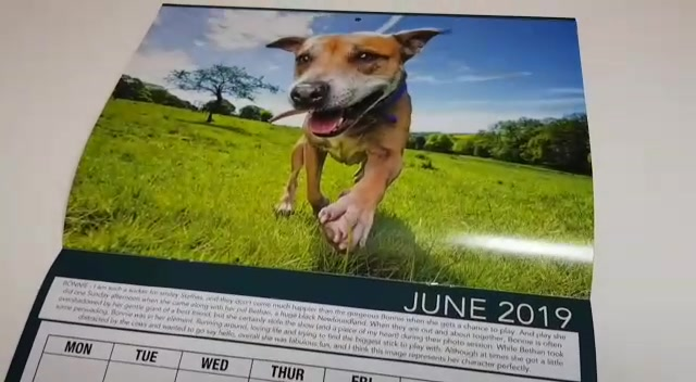 Bounders Limited Edition 2019 Calendar