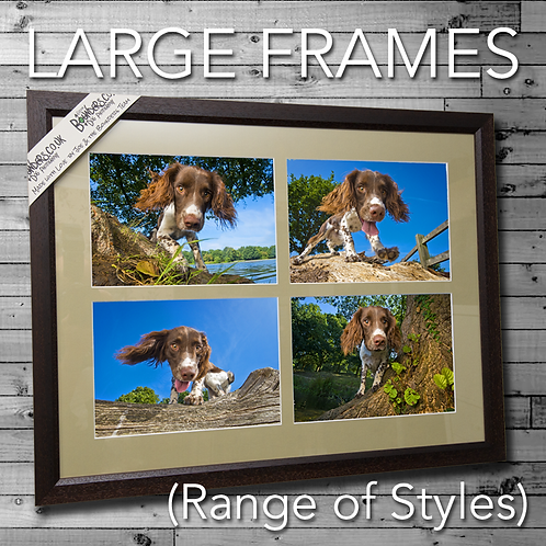 copy of Frames (Wooford)