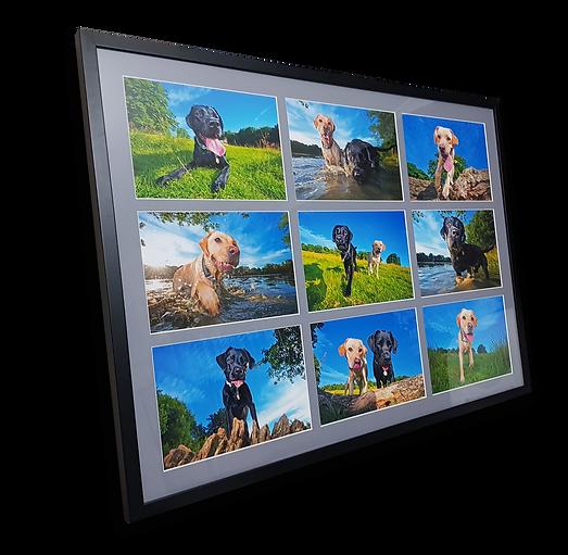 Ultimate-Frame-Premium-WEB.png