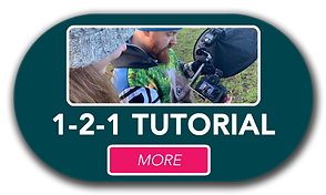 Button121tutorial.png