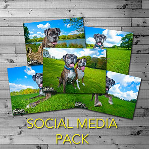 SOCIAL-MEDIA-PACK.jpg