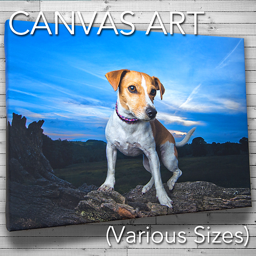 Canvas Portrait (various sizes)