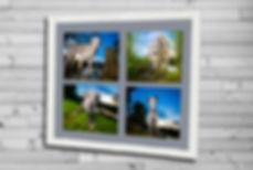 SAPPHIREbadge2_edited.jpg