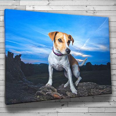Canvas-on-Wall.jpg