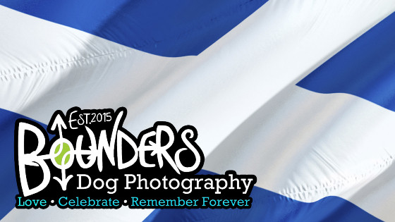 Bounders Dog Photography - Scotland Tour 2019