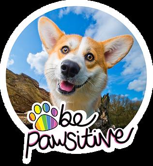 BePawsitive-George.png