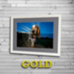 GOLDbadge2.png