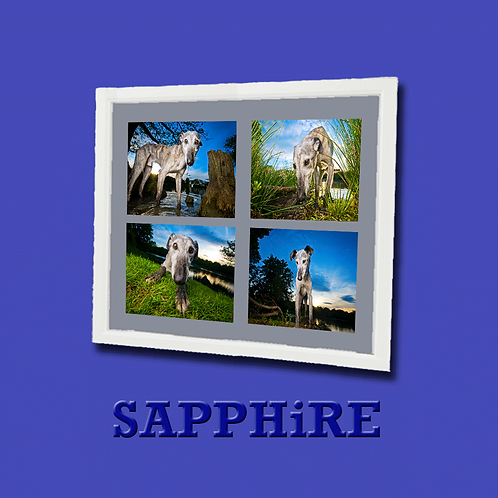 SAPPHiRE Photo Experience