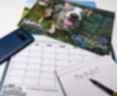 Calendar-2019-need-to-plan.jpg