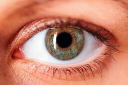 2_shocking_diseases_eye_doctor_Paffy69-2