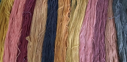 Multiple shades of brazilwood
