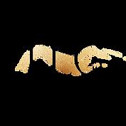 The_Lash_Company_Website_Logo_(transpare