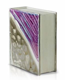 Libro Verzolini in ceramica n°65