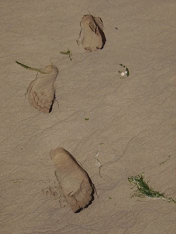 Footprints in sand - counselling journey