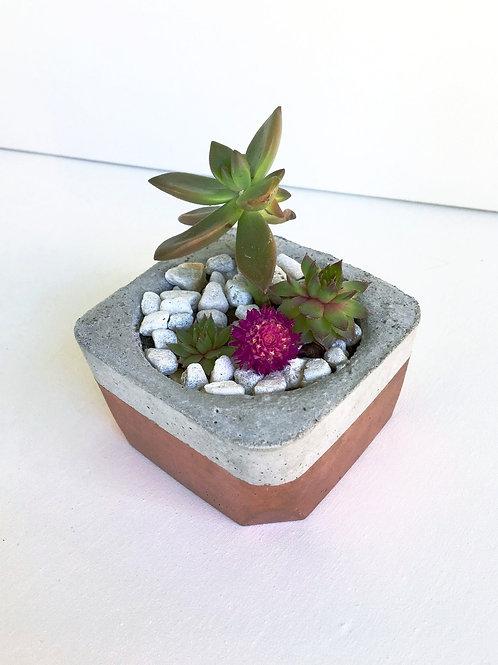 Copper Concrete Planter