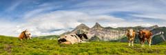 08072016-Vacheresse panorama.jpg