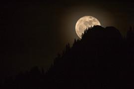 La lune sur les dents vertes.jpg