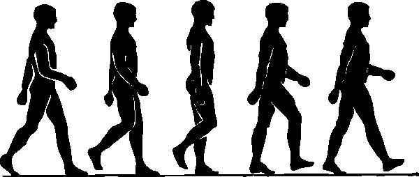 gyroblog8.png