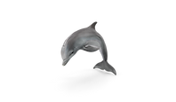 DOLPHIN.png
