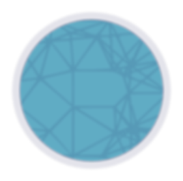 network circle 391px resized.png