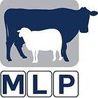 Monaro Livestock.jpg